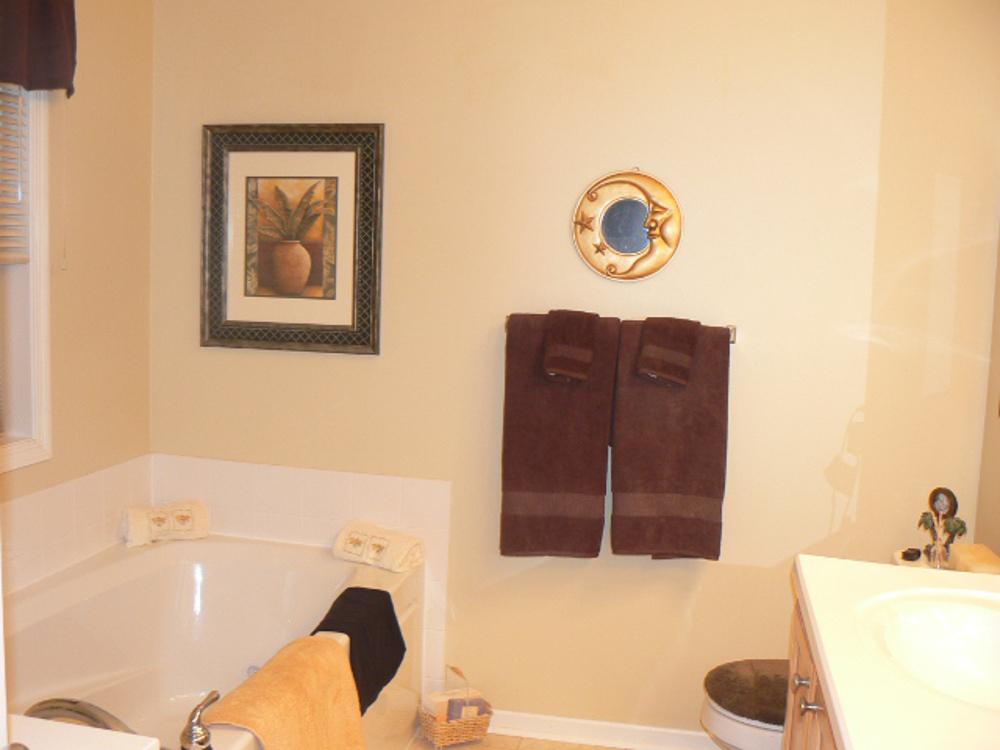 eden prairie rental property bathroom