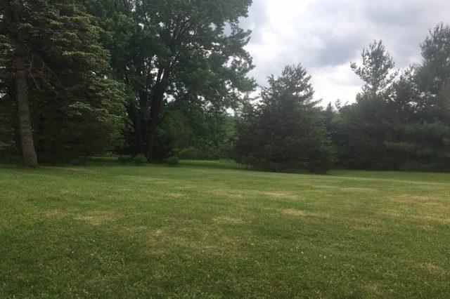 minnetonka home rental lawn