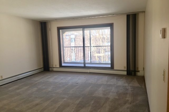minnetonka condominium rental living room