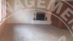 Tonka Bay duplex rental fireplace