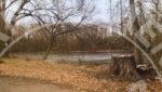 Tonka Bay duplex rental wetland